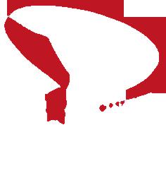 Arraditz